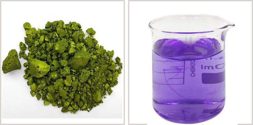 methyl-violet-2b-08