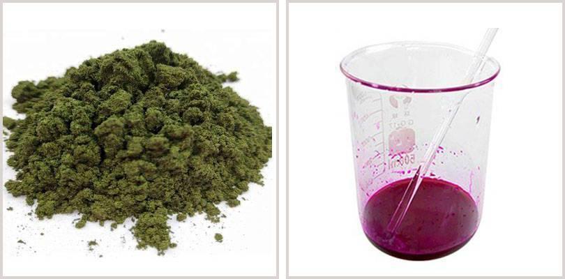 basic-violet-10-price